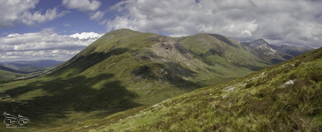 gry w szkocji