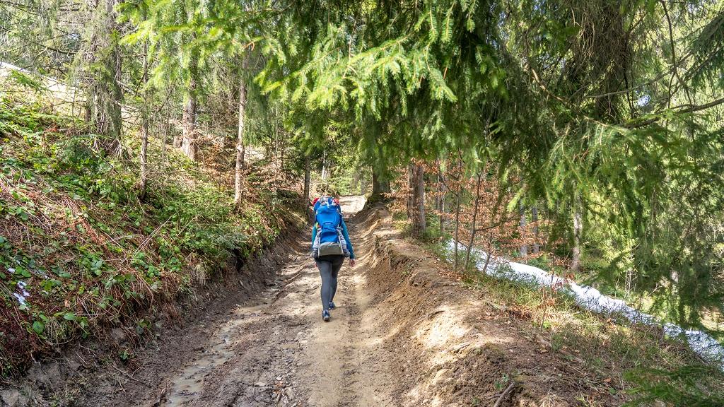 Szlaki w Gorcach