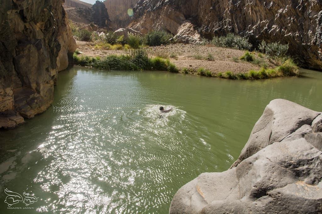 Mujib Nature Reserve