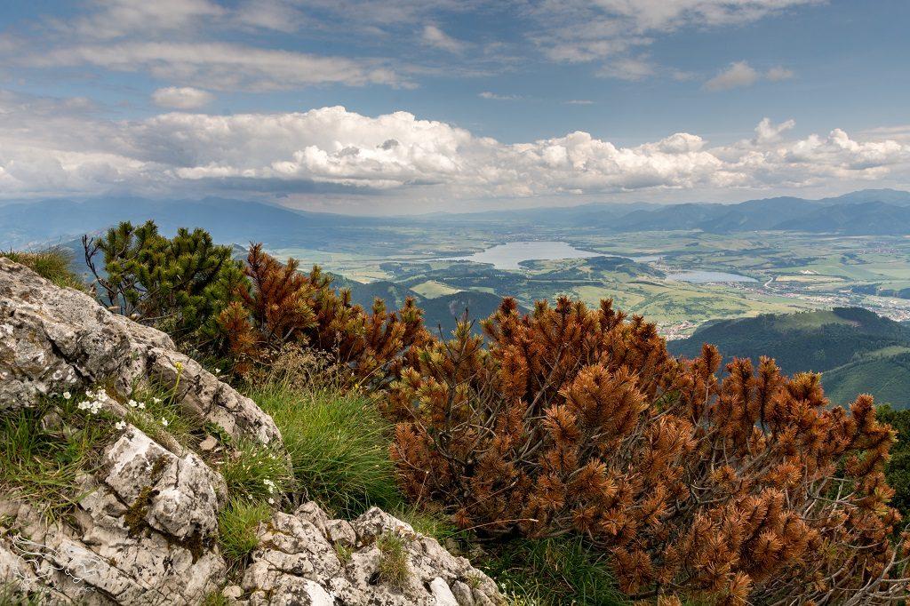 Wielki Chocz Góry na Słowacji