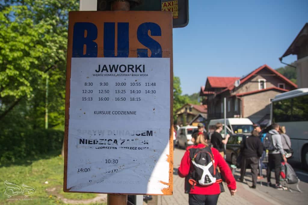 Szczawnica Jaworki Bus