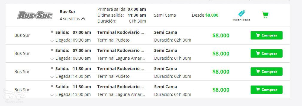 Puertos Natales Torres del Paine bus