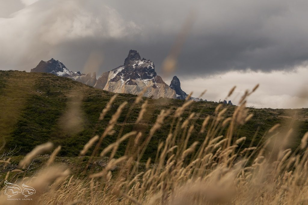 Torres-del-Paine-1-1