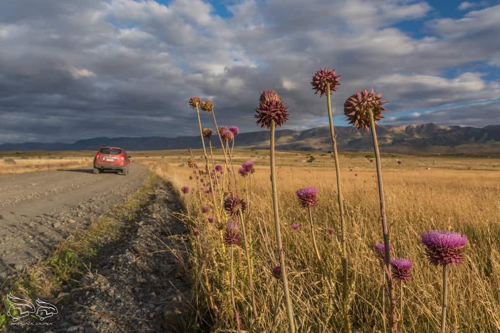 Wypozyczenia auta Patagonia