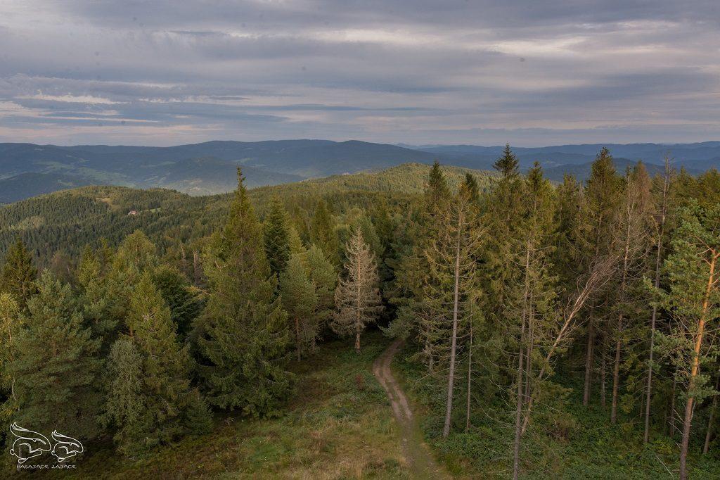 Beskid Sądecki - najpiękniejsze szlaki Chata Magóry