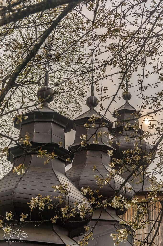 Beskid Sądecki - najpiękniejsze szlaki Dubne