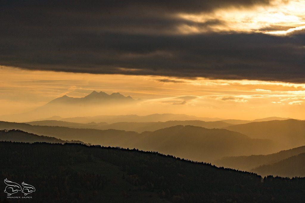 Beskid Sądecki - najpiękniejsze szlaki Wierchomla (5)