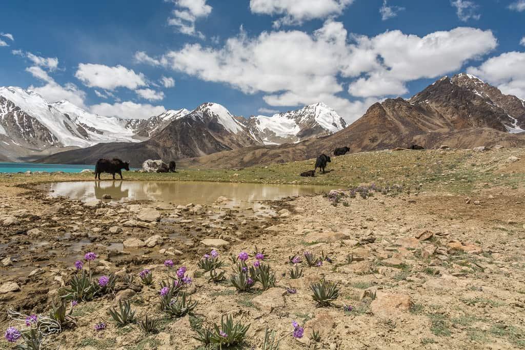 Tadżykistan-trekking-14