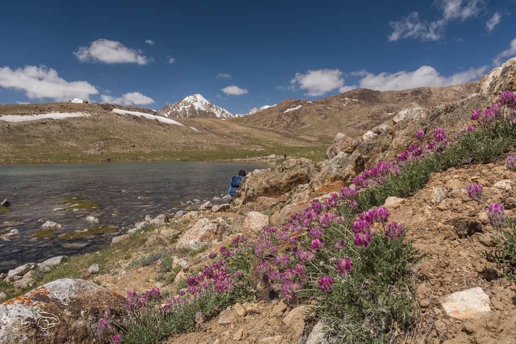 Tadżykistan-trekking-4-2