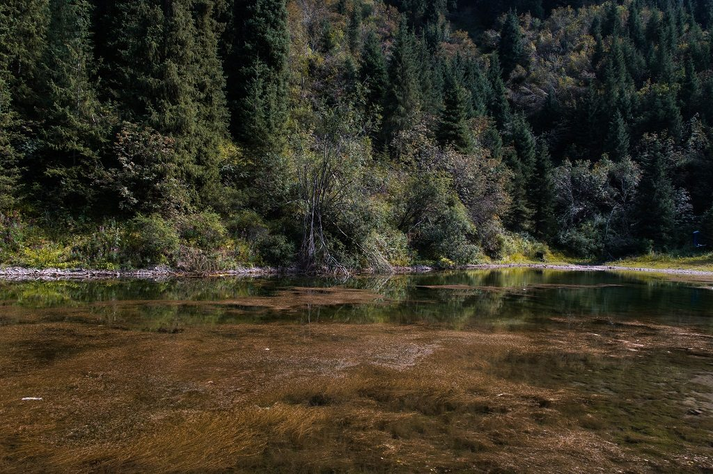 Jeziora Kolsai i Kaindy