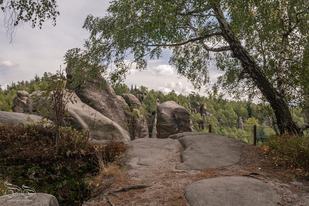 broumovske steny skaly