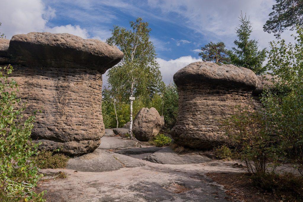 broumovske steny skalne grzyby