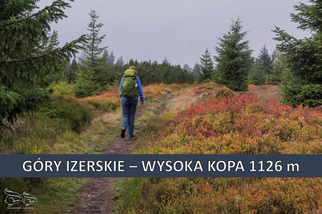 Korona Gór Polski - Wysoka Kopa