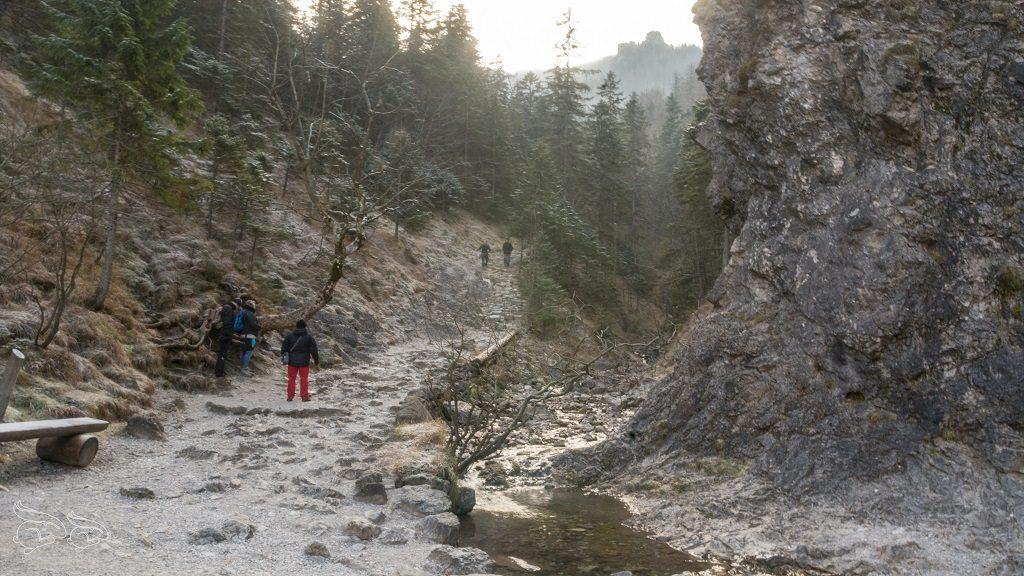 Dolina Białego - trasa na Sarnią Skałę
