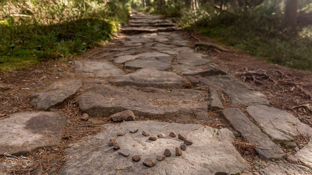 Babia Góra szlak