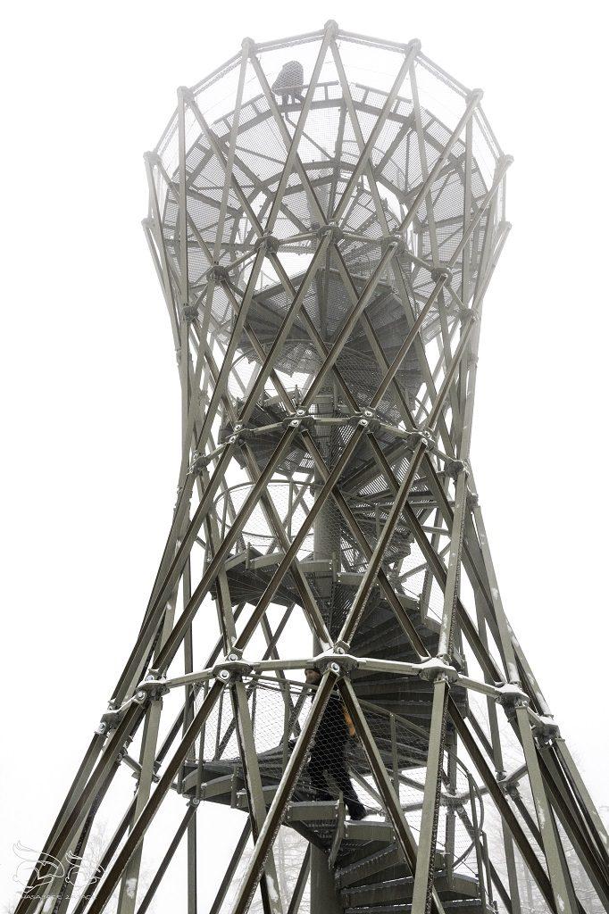 Borowa wieża