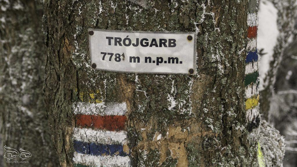 Trójgarb wieża szlak