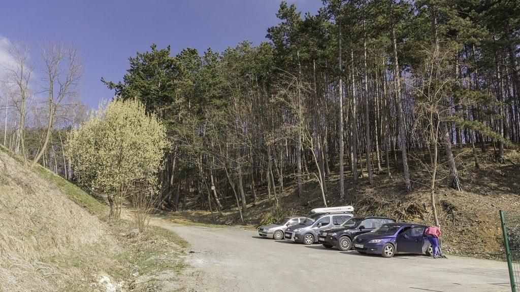 Dolina Bolechowicka parking