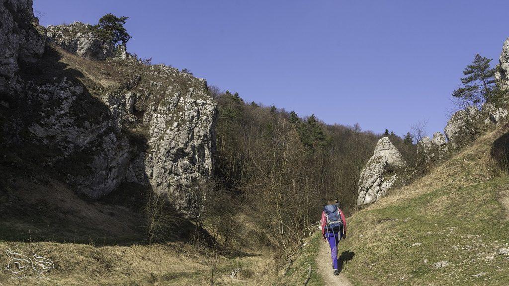 dolina bolechowicka szlak