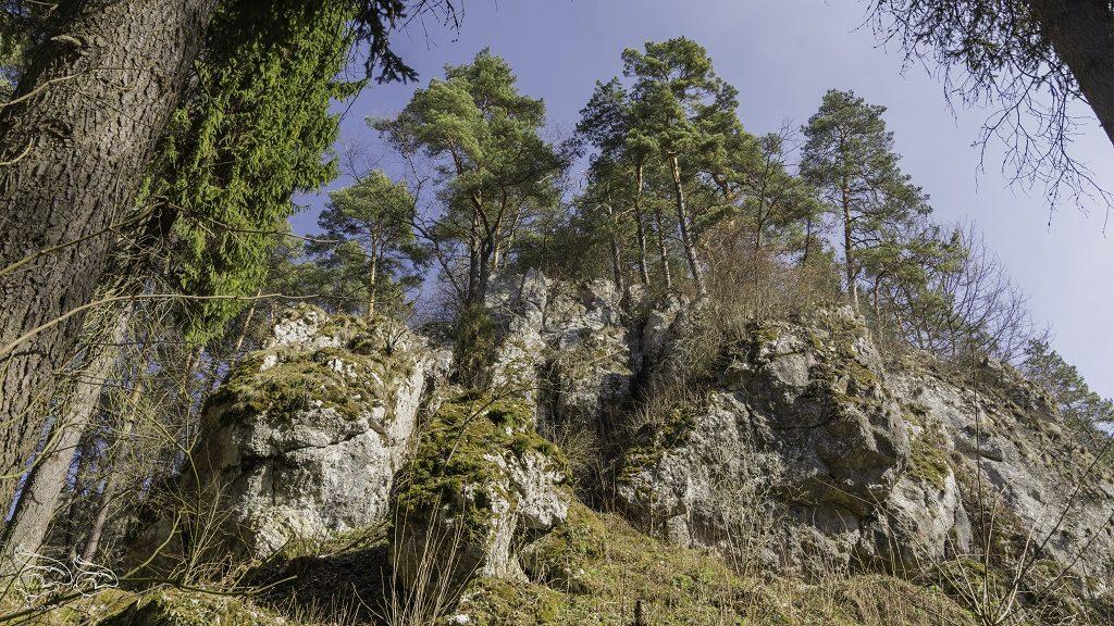 dolina bolechowicka skalki