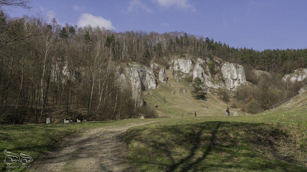 Dolina Kobylańska polana