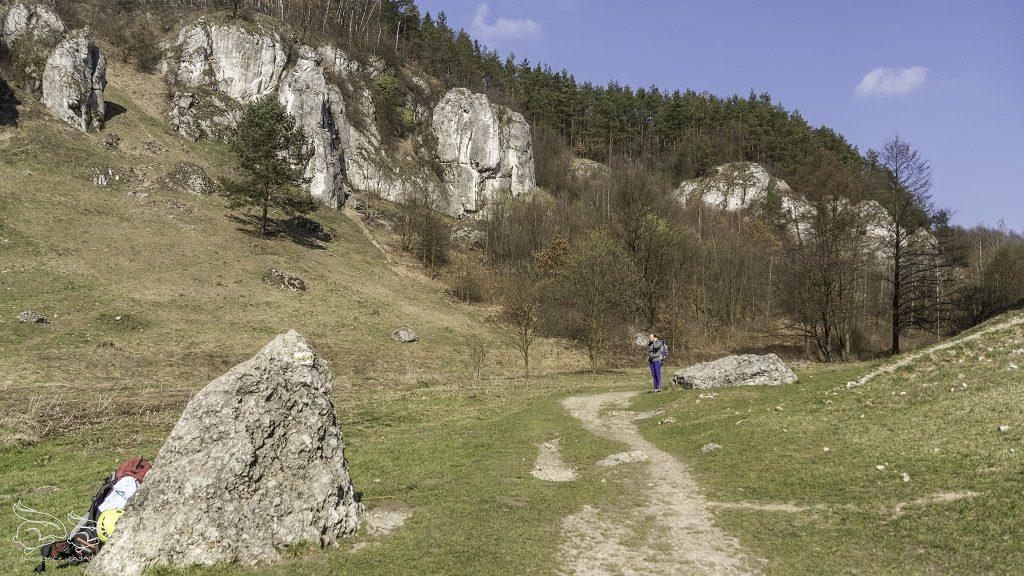 Dolina Kobylańska trasa