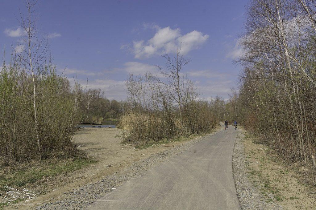 Bobrowisko w Starym Sączu