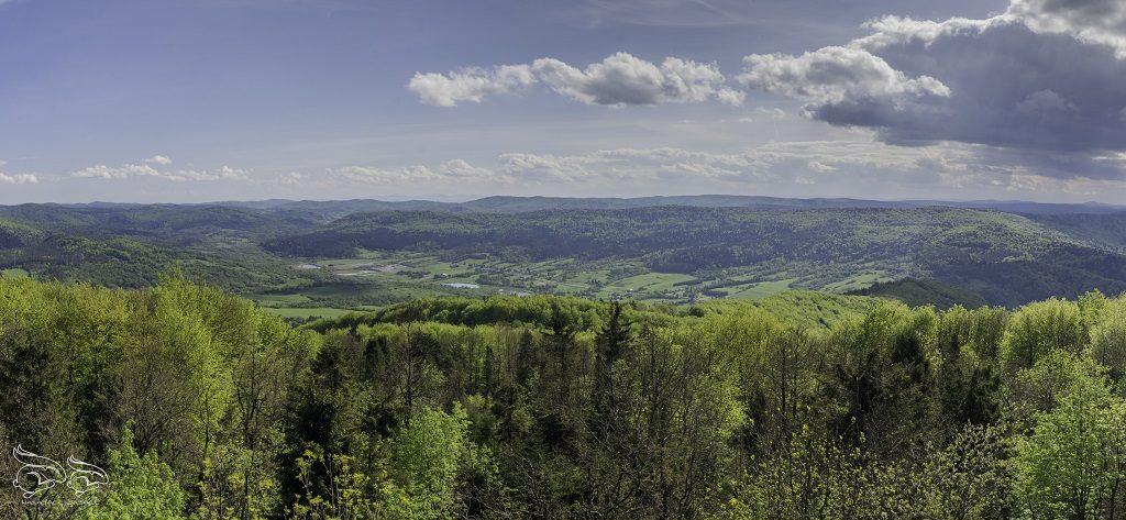 Panorama z Cergowej