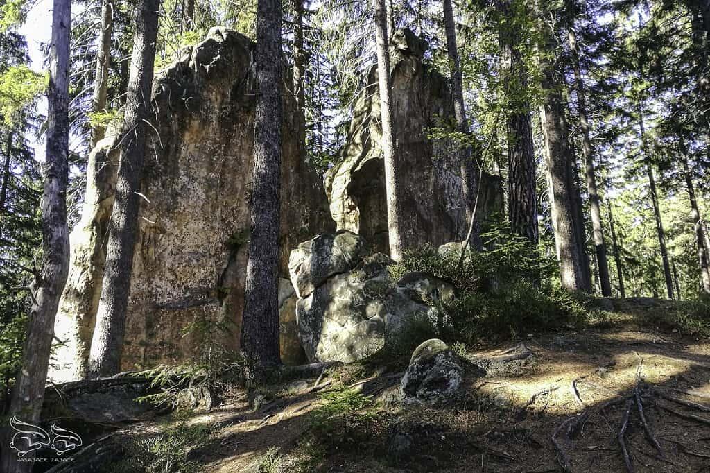 Góry Stołowe skalne grzyby