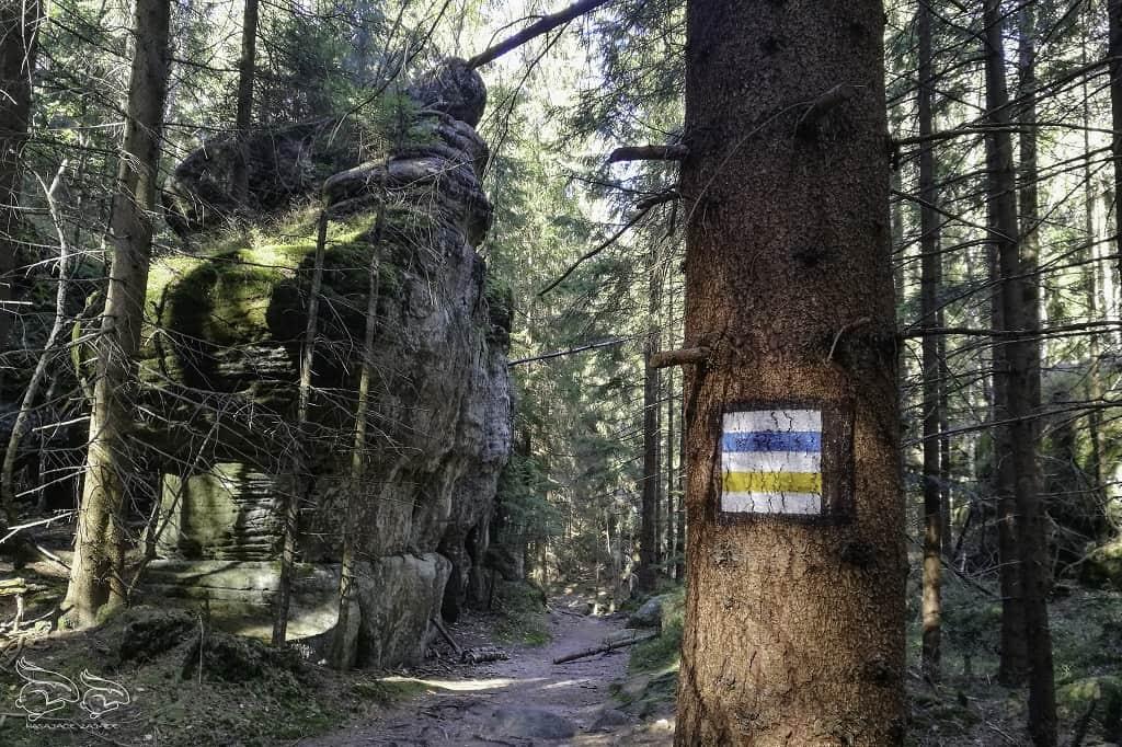 Góry Stołowe szlak