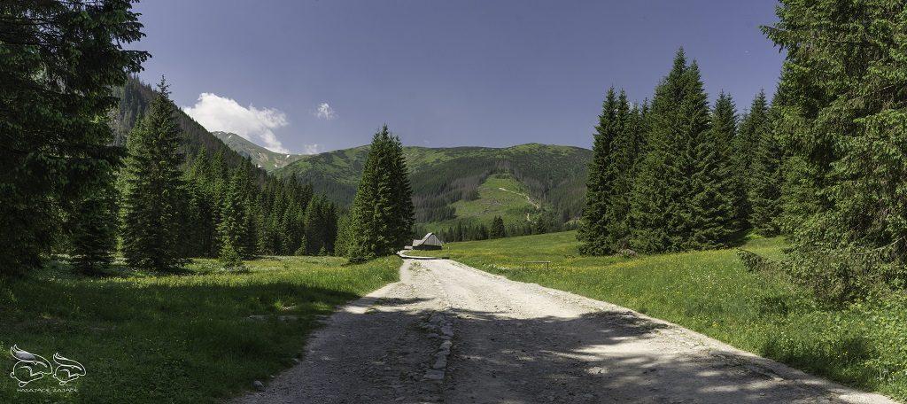 polana chochołowska