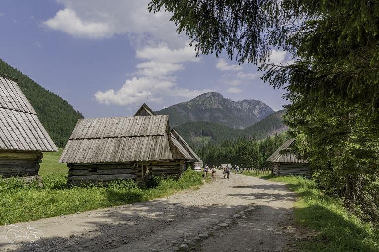 dolina chochołowska - polana