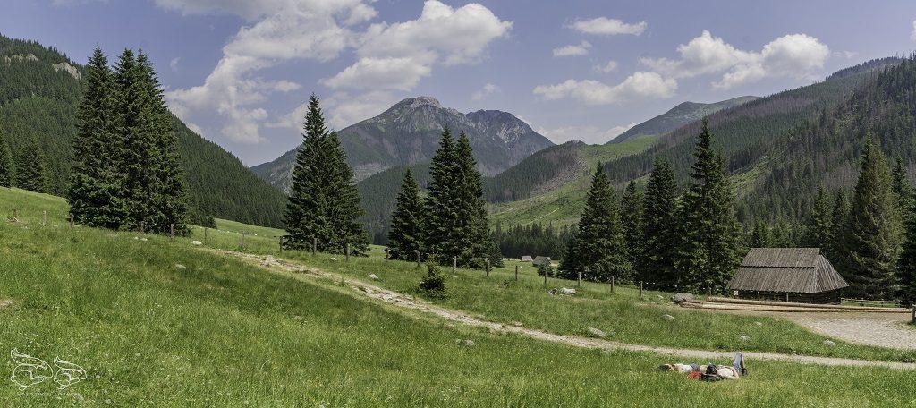widok z polany chochołowskiej