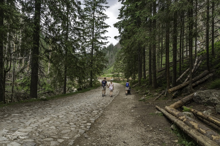 dolina chochołowska trasa do polany