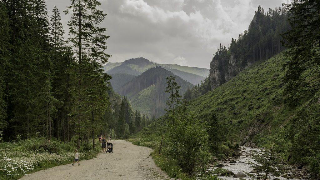 trasa dolina chochołowska