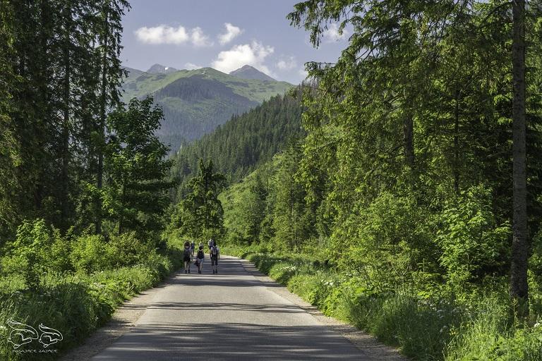 dolina chochołowska szlak