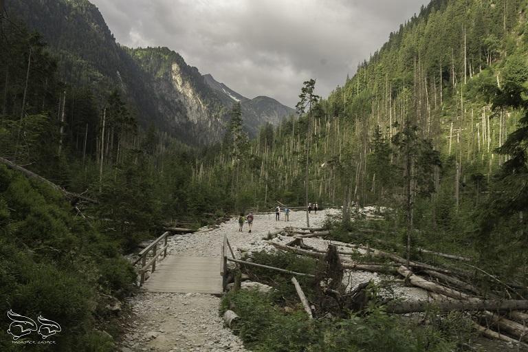 Dolina Pięciu Stawów - szlak na Szpiglasowy Wierch