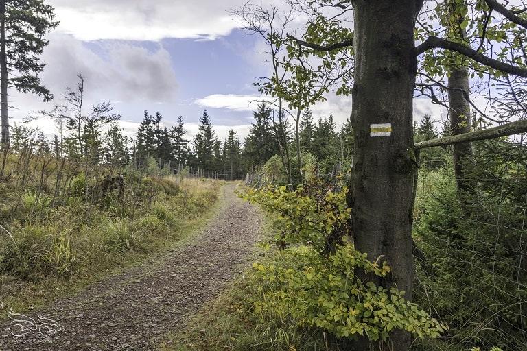 Waligóra trasa