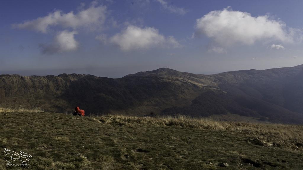 widoki z Tarnicy - najwyższego szczytu w Bieszczadach
