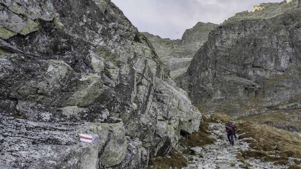 Szlak na Rysy w Tatrach