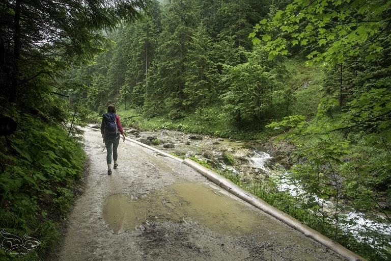 dolina strążyska szlak