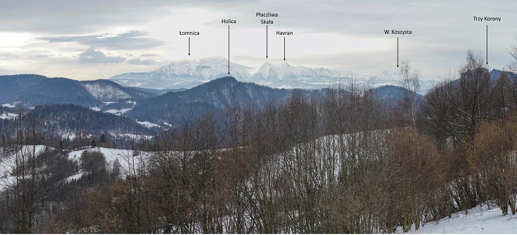Bacówka pod Bereśnikiem panorama