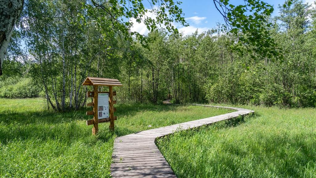 kampinoski park narodowy atrakcje