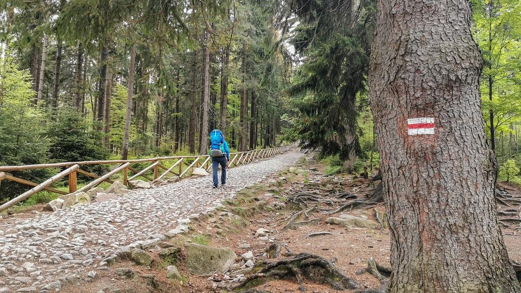 Wodospad Kamieńczyka - szlak na Szrenicę