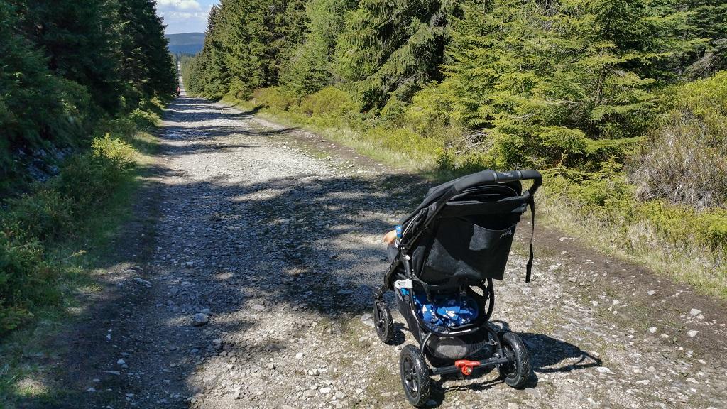 Jaki Wózek w Górach