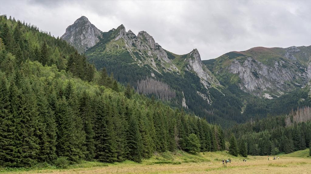 Dolina Małęj Łąki
