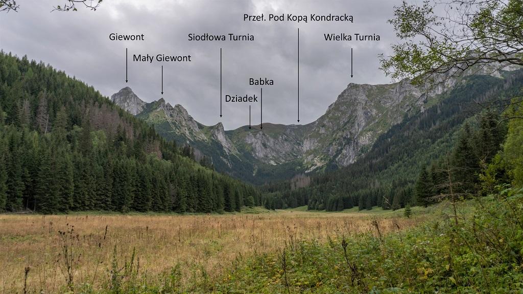Dolina Małęj Łąki panorama