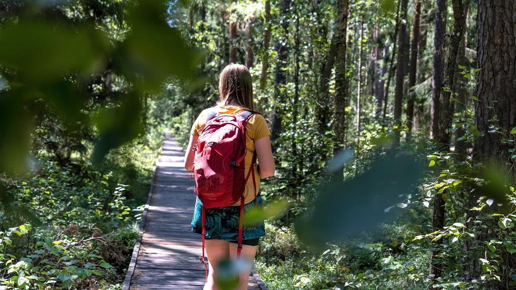 biebrzanski park narodowy - atrakcja Podlasia