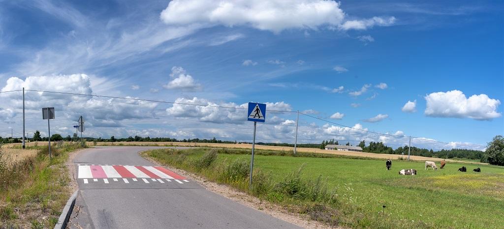 Przejście dla pieszych w szczerym polu