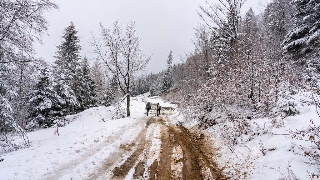 szlak ze Szczyrku